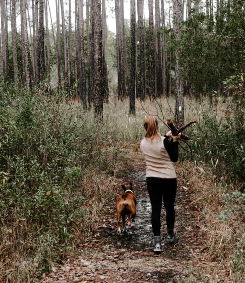 Frau mit Hund auf Waldspaziergang